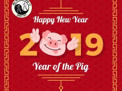 2019 שנת חזיר אדמה- מה היא מביאה?